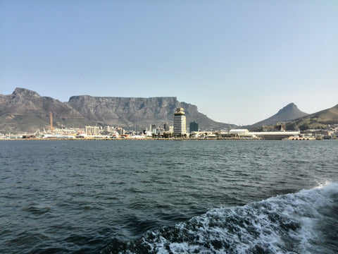 View on the way back from Robben Island