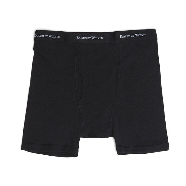 Logotype Boxer Briefs (3 Pack) - Raised by Wolves  - 2