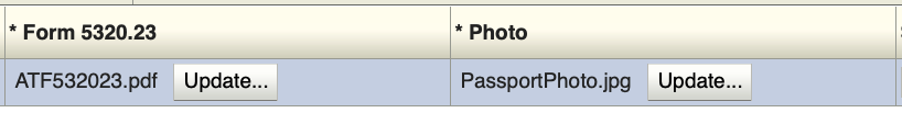 RED X Error on ATF eForm 1 after Uploading ATF 5320.23 and Passport Photo