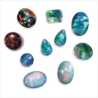 Growth of Opals begins