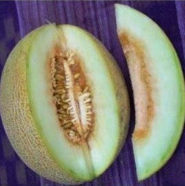 Ananas Melon Seeds