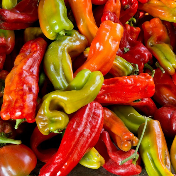 Anaheim Hot Chili Pepper Seeds