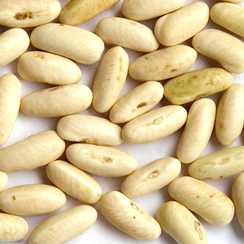 White Rice Bush Bean Bean Seeds