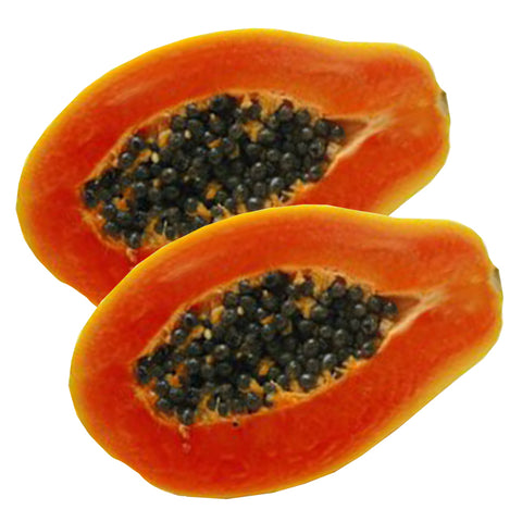 Florida Red Royale Papaya Seeds