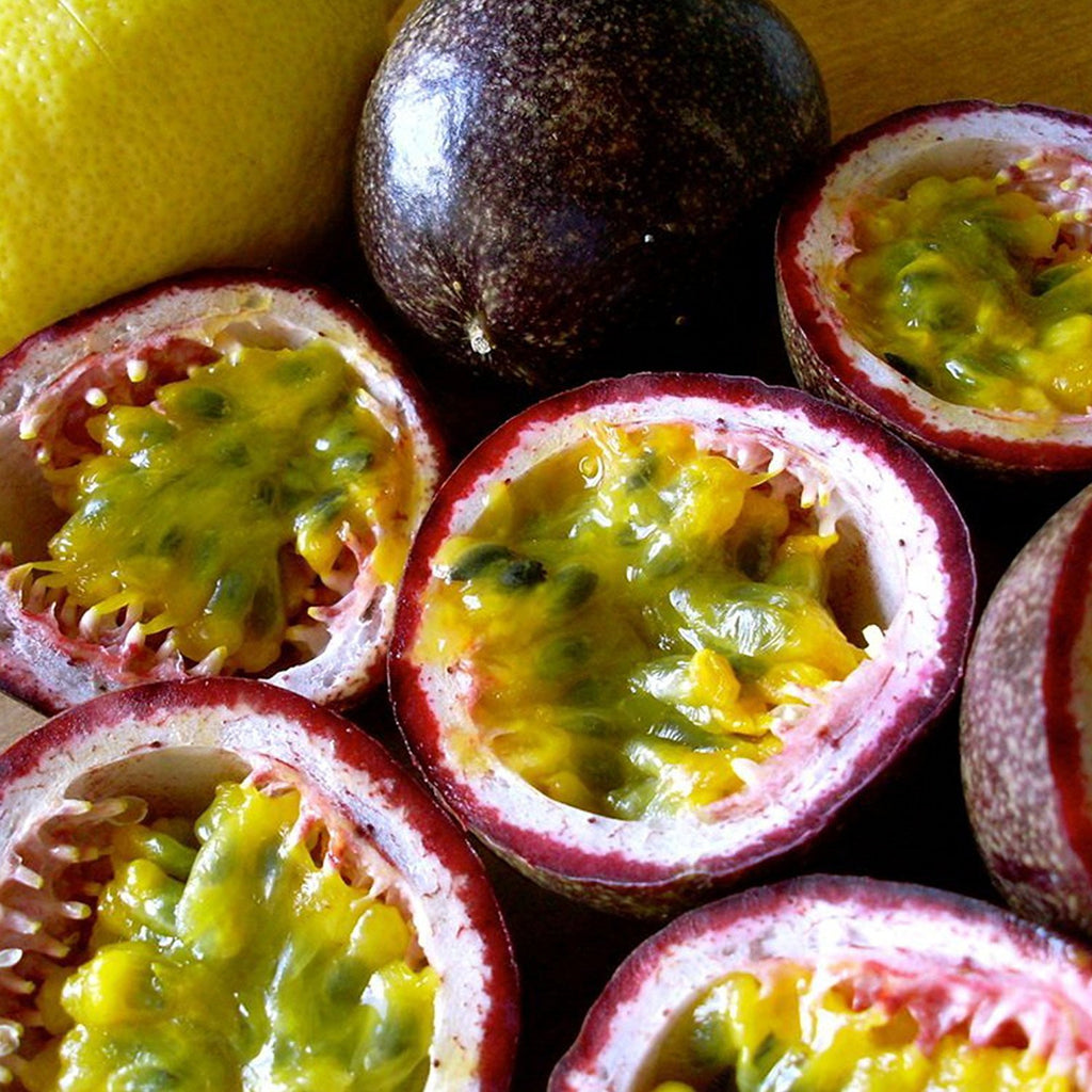 Purple Passionfruit Seeds (Passiflora edulis)