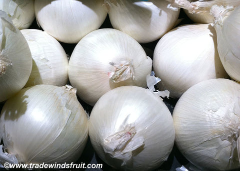 White Sweet Spanish Onion Seeds