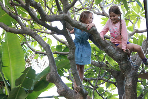 unstructured-play-girls-in-tree