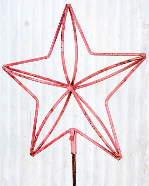 3-D STAR STAKE