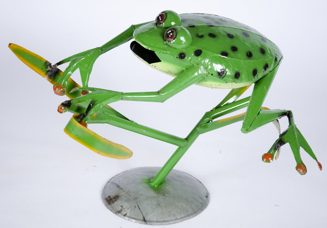 Jumping Frog with Spots