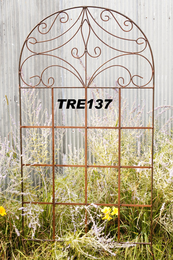 LG FANCY SCROLL TRELLIS