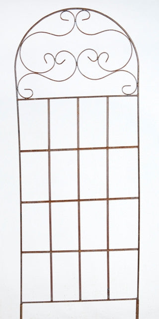 SCROLL TOP TRELLIS