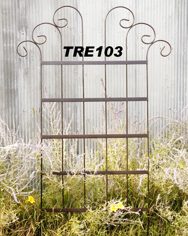 WIDE SPIN TRELLIS