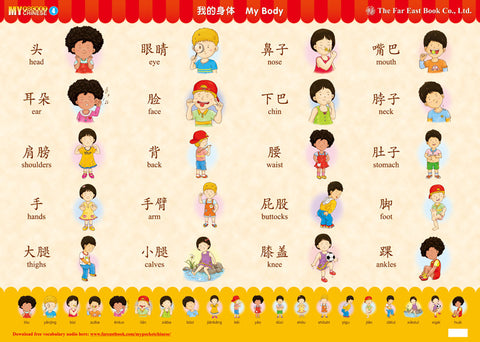 My Pocket Chinese Poster (4) My Body (Simplified Character Version)