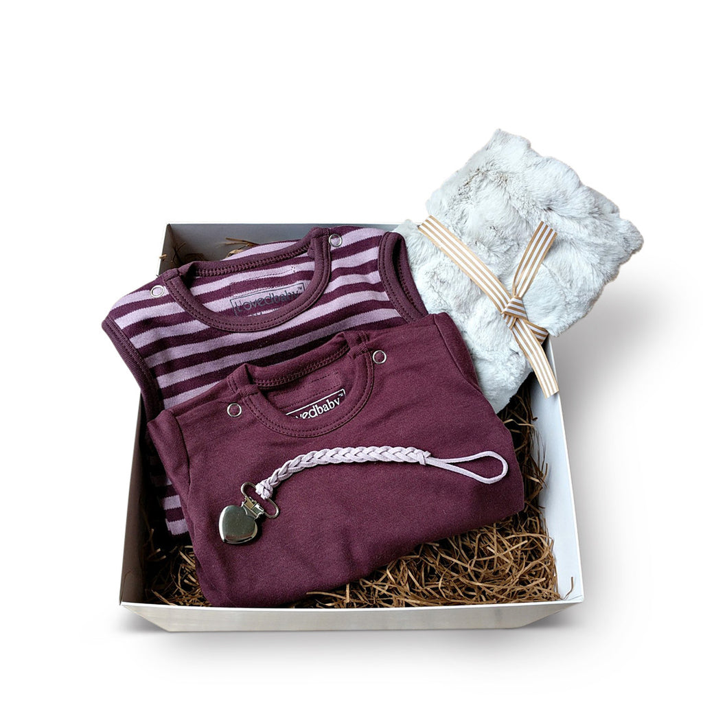 L'oved Baby organic cotton layette set in purple with silver minky blanket
