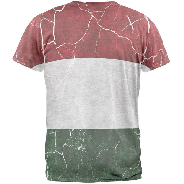 Distressed Hungarian Flag Mens T Shirt
