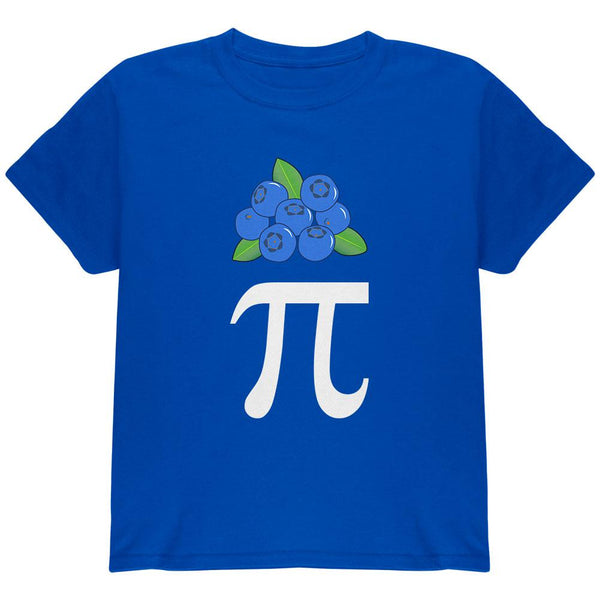 Halloween Math Pi Costume Blueberry Day Youth T Shirt