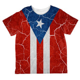 Distressed Puerto Rican Flag All Over Toddler T Shirt