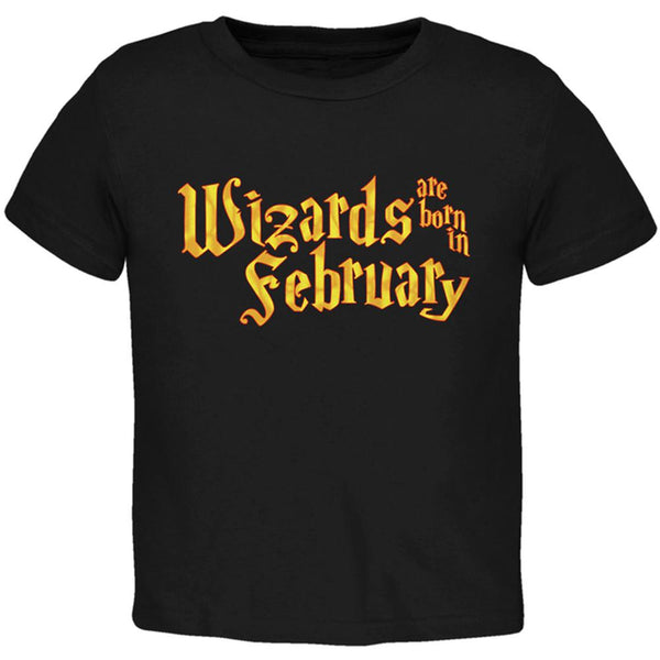 Wizards are born in February Toddler T Shirt