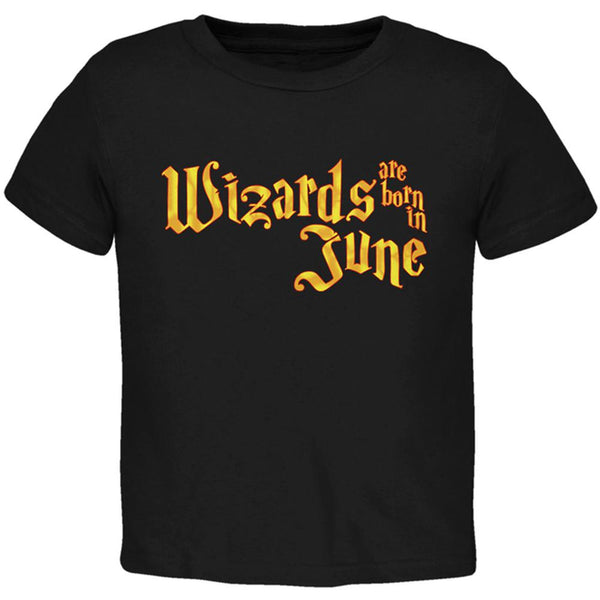 Wizards are born in June Toddler T Shirt