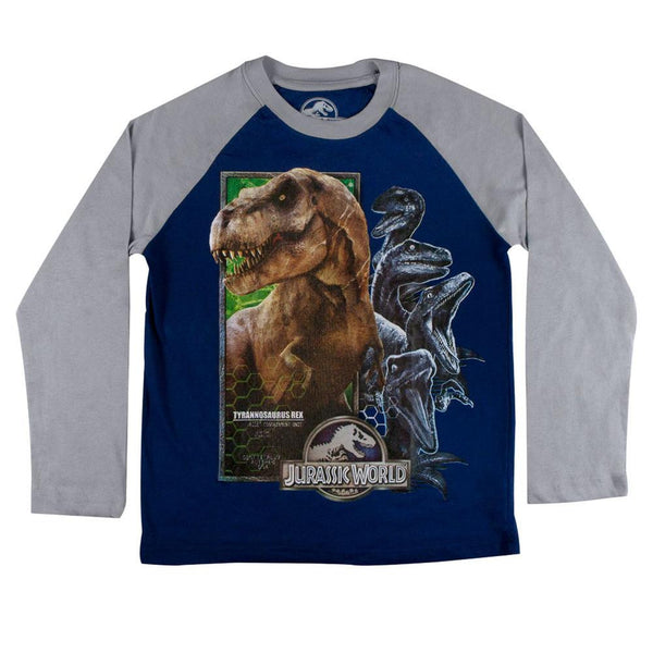 Jurassic World - Honey Comb Dinosaur Collage Youth Raglan