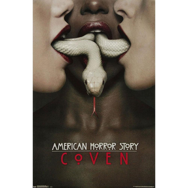 American horror story coven 22x34 standard wall art for American horror story wall mural