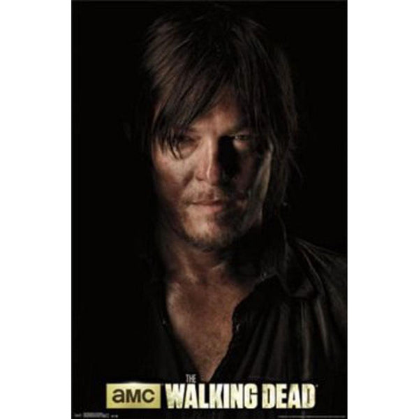 Walking Dead - Daryl Shadow 22x34 Standard Wall Art Poster