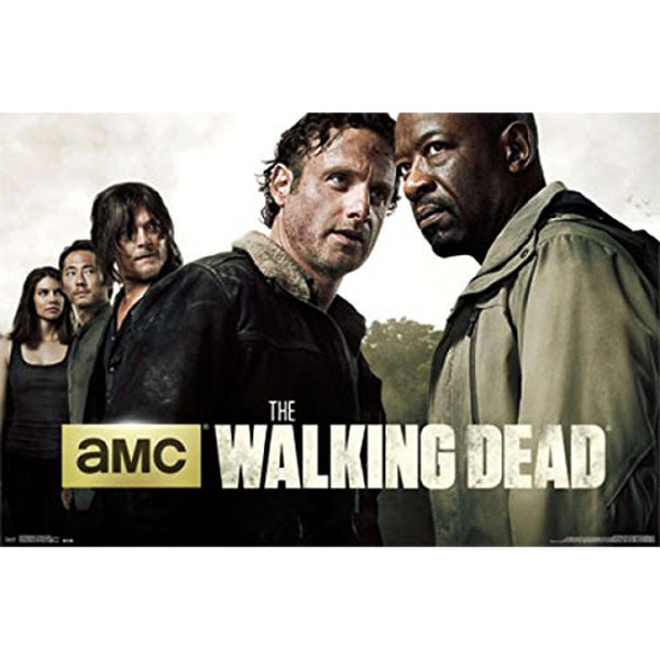 Walking Dead - Season 6 Teaser 22x34 Standard Wall Art Poster