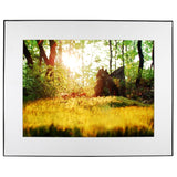 Woodland Moss Sunset Photo White Mat Framed Wall Art Jay El