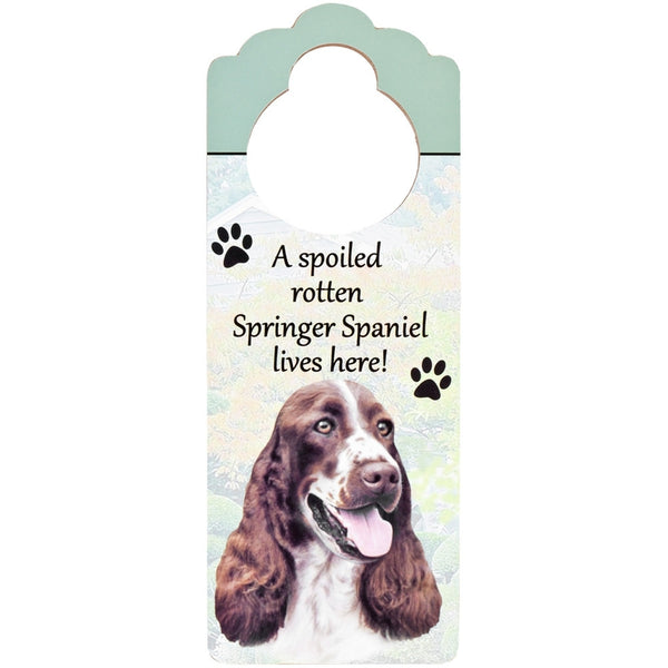 A Spoiled Springer Spaniel Lives Here Hanging Doorknob Sign