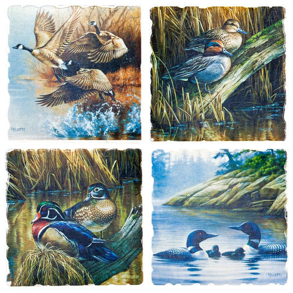 Ducks At The Quiet Cove 4 Pack Coaster Set