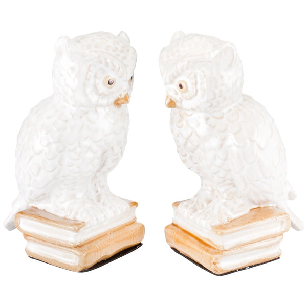 Owls Perched Set of Two Bookends