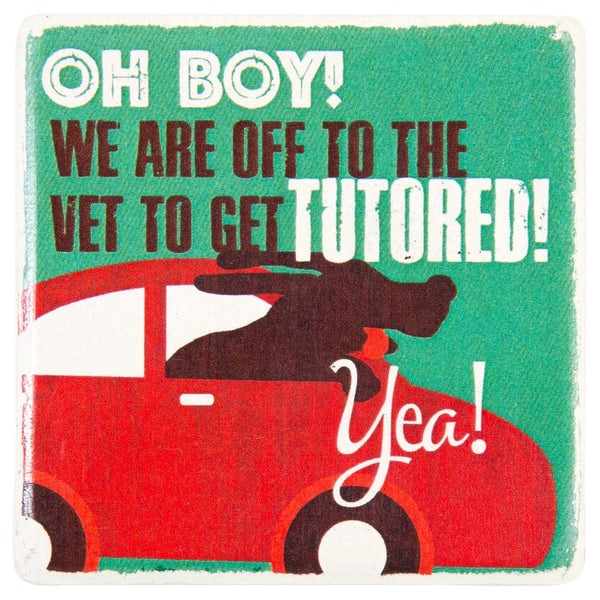Basset Hound Off To Get Tutored Ceramic Refrigerator Magnet