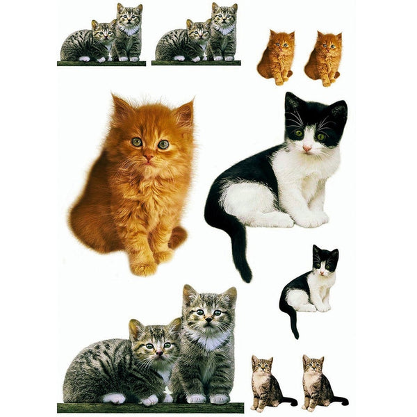 Cats Kitten Collage Wall Decal Set