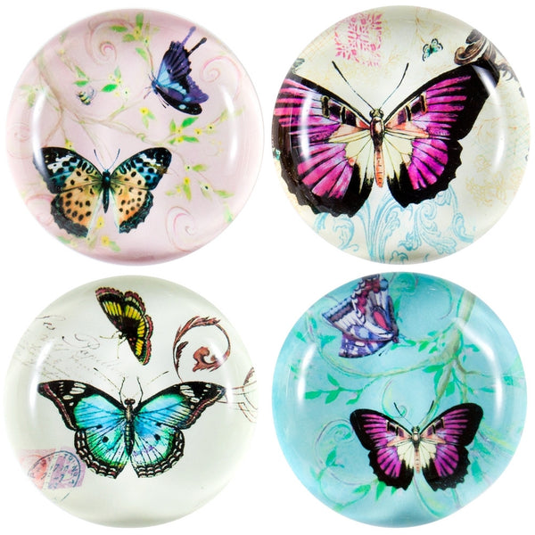 Butterflies In Action Set of Four Glass Magnets