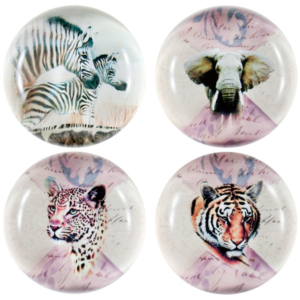 Variety Safari Animals Set Of Four Crystal Magnets