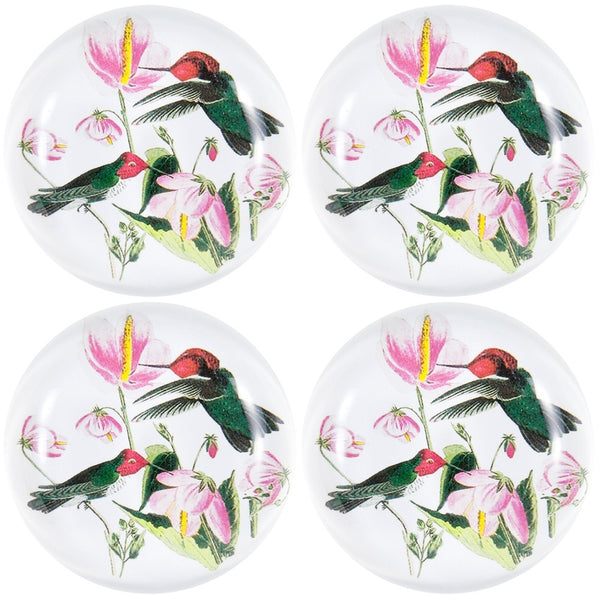 Colombian Hummingbirds In Flowers Set of Four Crystal Magnets