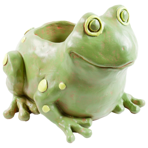 Frog Body Storage Container