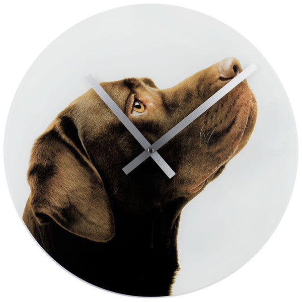 Crazy Dogs Choco Lab Wall Clock
