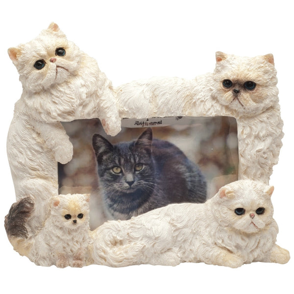 Himalayan Cat Family Large Picture Frame