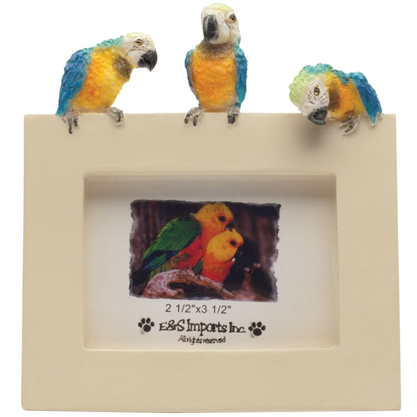 Macaw Trio Perched Small Picture Frame