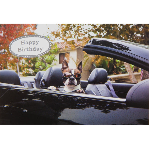 Enjoy Your Midlife Crisis Birthday Greeting Card