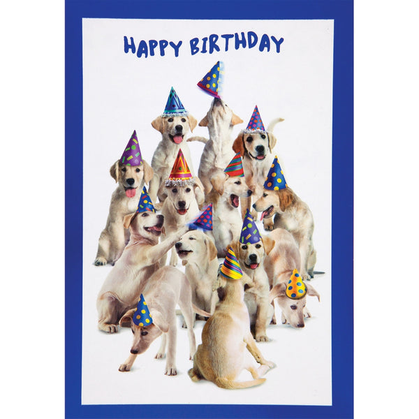 Make You Smile Birthday Greeting Card