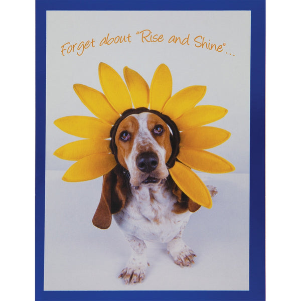 Rise and Shine Birthday Greeting Card