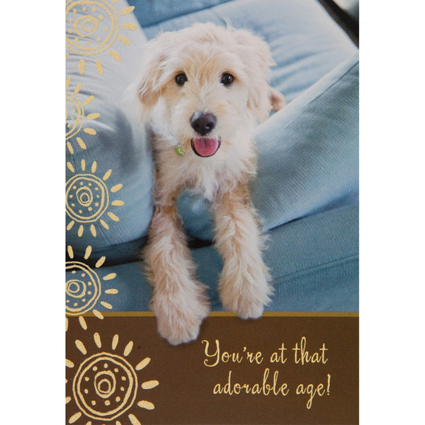 Adorable Age Birthday Greeting Card