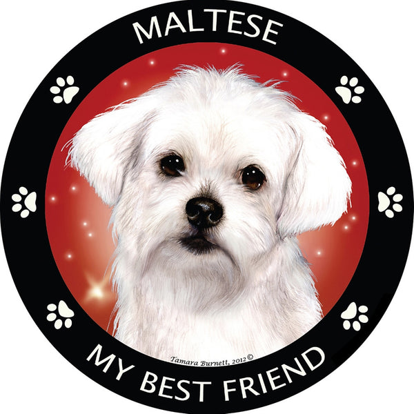 Maltese My Best Friend Magnet
