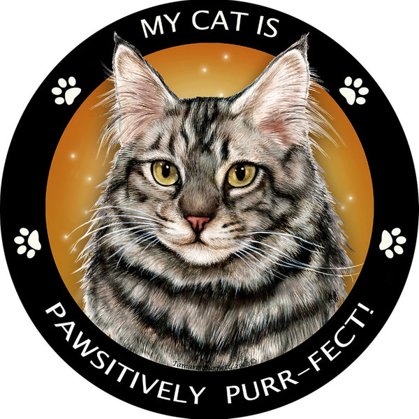 Maine Coon Silver Tabby Pawsitively Purr-Fect Magnet