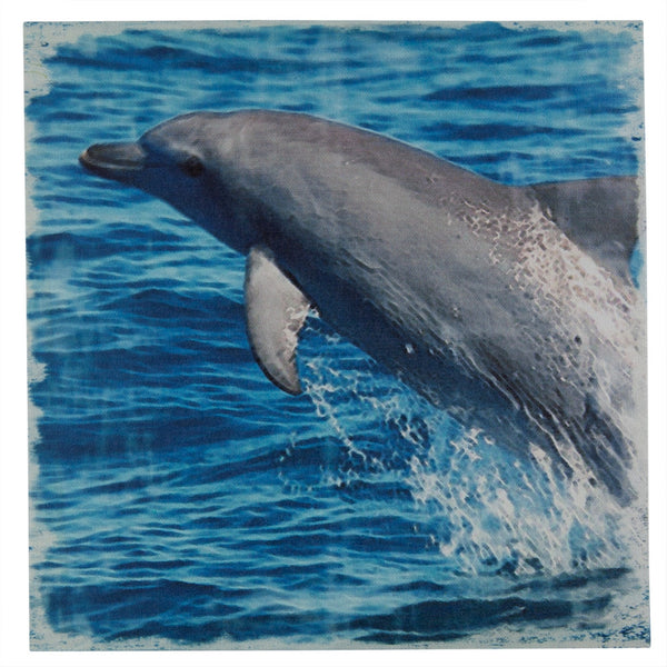 Dolphin In Air Canvas Art