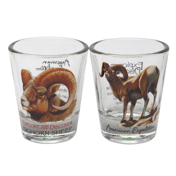 Bighorn Sheep Shot Glass Set