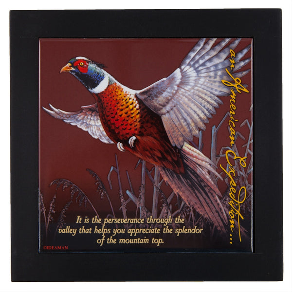 Common Pheasant Wood Framed Trivet