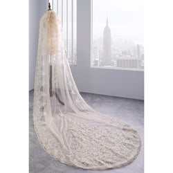 Sequined Applique Bridal Veil - SALE LAB